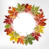 Венок листьев осени, рук-чертеж. Illu вектора Стоковое Фото