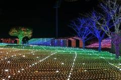 Illumia光照明节日韩国夜 图库摄影