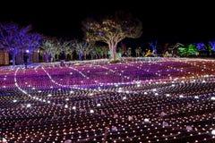Illumia Light Illumination festival Korea Night Stock Photography
