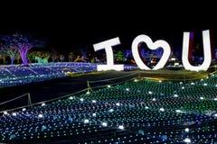 Illumia tänder den belysningfestivalKorea natten som JAG ÄLSKAR DIG Arkivbild