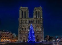 Illuminated blue Christmas tree at Notre Dame de Paris in Paris. Illuminated blue Christmas tree at Notre Dame de Paris Cathedral the world famous Gothic Roman Stock Photos