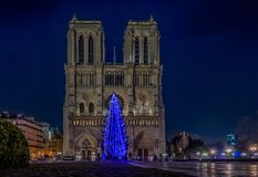 Illuminated blue Christmas tree at Notre Dame de Paris in Paris. Illuminated blue Christmas tree at Notre Dame de Paris Cathedral the world famous Gothic Roman Royalty Free Stock Image