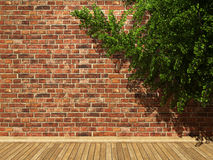 Illuminated brick wall and ivy Royalty Free Stock Photos