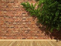 Illuminated brick wall and ivy Royalty Free Stock Photos