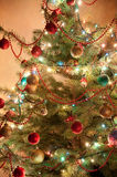 Illuminated Christmas tree Royalty Free Stock Image