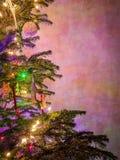 Illuminated christmas tree Stock Images