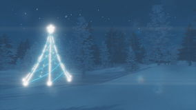 Illuminated Christmas tree in the winter forest stock video footage