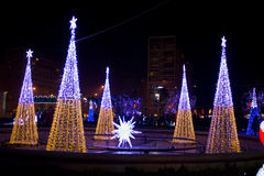 Illuminated Christmas trees Stock Photography