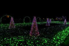 Illuminated Christmas Trees and Archs Royalty Free Stock Photography