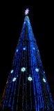 Illuminated city Christmas tree. In a park Royalty Free Stock Photo