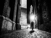 Illuminated cobbled la via in vecchia città di notte Fotografie Stock