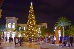 Illuminated and decorated Christmas Tree at night on open mall background in Lake Buena Vista area. Orlando, Florida. November 17, 2018 Illuminated and decorated stock photos
