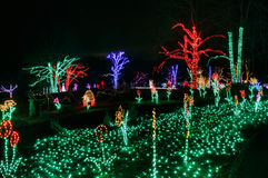 Illuminated Holiday Garden Lights Christmas Virginia. Illuminated garden of seasonal holiday lights displayed at Meadowlark regional park in Northern Virginia at royalty free stock image