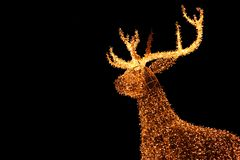 Illuminated LED String Gold Giant Reindeer of Outdoor Christmas Decoration Against Night Sky. Background stock photos