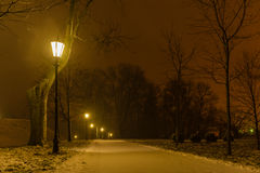 Illuminated night park alley. View with lanterns during heavy snowing. Snow-covered trees. Heavy snowing night Royalty Free Stock Image