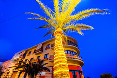 Illuminated Palm Tree Stock Photo