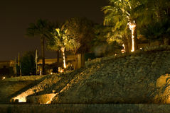 Illuminated palm trees. Scenic view of illuminated palm trees on top of stone embankment in hotel complex, Sharm el Sheikh, Egypt Royalty Free Stock Photo