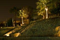 illuminated palm trees Στοκ φωτογραφία με δικαίωμα ελεύθερης χρήσης