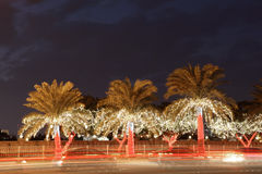 Illuminated palm trees in the city of Manama Stock Photo