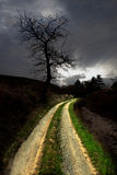 Illuminated path Stock Photo