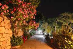 Illuminated path at luxury hotel Royalty Free Stock Photo