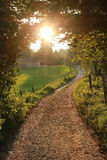 Illuminated path in rural landscape Royalty Free Stock Image