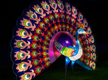Illuminated Peacock lantern Stock Image