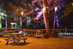 Illuminated Picnic Area. Coloured lanterns illuminate the forest and picnic area in the Electric Woods at Robin Hill on the Isle of Wight, to celebrate Diwali Royalty Free Stock Photography