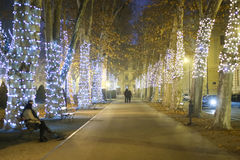 Illuminated plane tree alley. ZAGREB, CROATIA - DECEMBER 23rd, 2016: Advent time in city center of Zagreb, Croatia. People walking down the illuminated plane Royalty Free Stock Photography