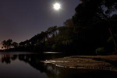 Illuminated pond Royalty Free Stock Images