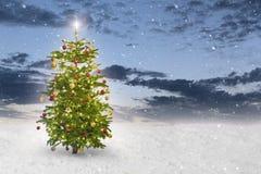 Illuminated star on a christmas tree stock photo