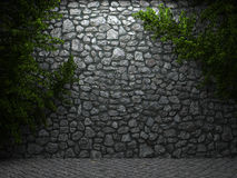 Illuminated stone wall and ivy Stock Images
