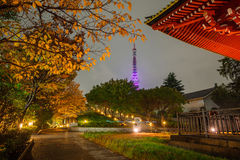 Illuminated Tokyo tower at night Royalty Free Stock Images