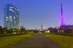 Illuminated Tokyo tower in the park at night. Japan Royalty Free Stock Images