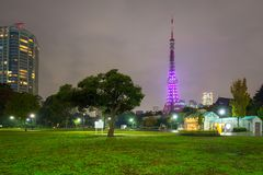Illuminated Tokyo tower in the park at night Stock Images
