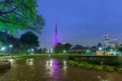 Illuminated Tokyo tower in the park at night. Japan Stock Photos
