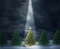Illuminated Tree. Illuminated Christmas tree with a row of evergreen pines and a center decorated holiday icon with bows and gifts enlightened with heavenly Stock Photo