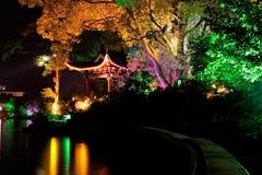 Illuminated tree, Guilin, China Royalty Free Stock Photography