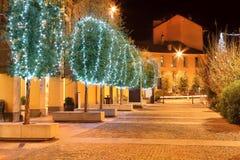 Illuminated trees. Alba, Italy. Royalty Free Stock Photo