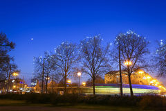 Illuminated trees in city Royalty Free Stock Image