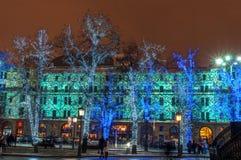 Illuminated trees Stock Photography