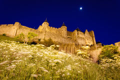 Illuminated walls towers flowers of Carcassonne Royalty Free Stock Photo