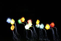Illuminated watering cans. During lighting show GLOW2014 in Eindhoven, the Netherlands Royalty Free Stock Images