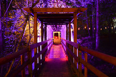 Illuminated Wooden Footbridge and Forest at Night. An illuminated footbridge crosses into a forest at night creating a vanishing point perspective Stock Photography
