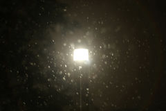 Illuminating street lamp. A view of an illuminating street lamp during strong snowfall Stock Photography