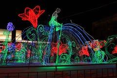Illumination on the fountain. Krasnoyarsk Royalty Free Stock Photos