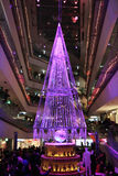 Illumination light showing in the winter at Ometosando, Tokyo, Japan Royalty Free Stock Photos