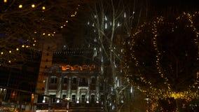 Illumination sur les arbres banque de vidéos