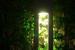 Illuminazione all'aperto di umore nella sera con la r luminosa e bella Fotografia Stock