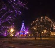 Illuminazione celebratoria per natale Immagine Stock